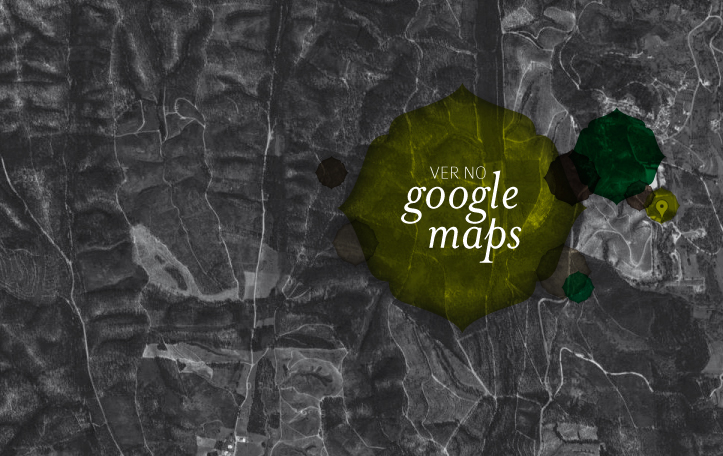 ver no google maps